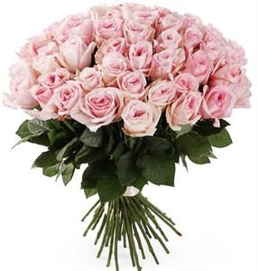 Букет 51 роза Пинк О'Хара