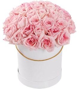51 роза Пинк О'Хара в шляпной коробке