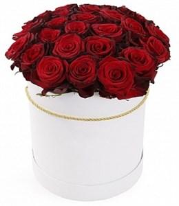 из 25 красных роз Ред Париж в шляпной коробке