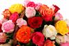 Фламандская легенда (51 роза) в корзине - фото 5975
