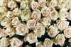 Букет 501 роза Талея в корзине - фото 6163
