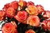 51 роза Хай Мэджик в корзине - фото 6961