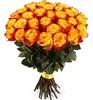 Букет 35 роз Хай Еллоу - фото 8185