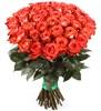 Букет 51 роза Игуана, коралловая - фото 8257